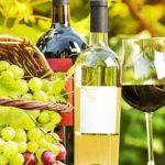 армения, ереван, армянское вино, виноделие в армении, вина армении, арени, винный тур в армению, дегустация вина, туры в армению