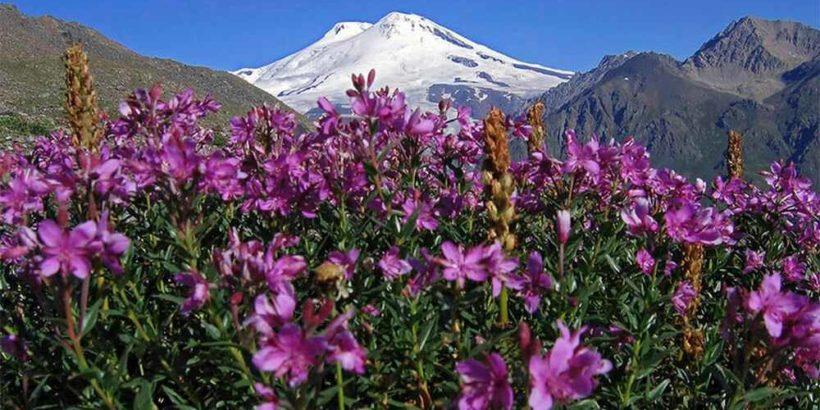 Арагац – самая высокая гора на территории Армении