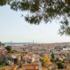 belvedere-2048684_1280